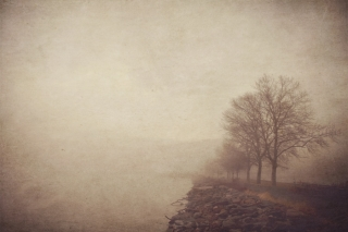 Foggy_Day_Landscape.jpg